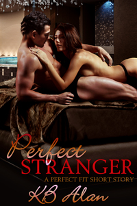 Perfect Stranger erotic romance book cover